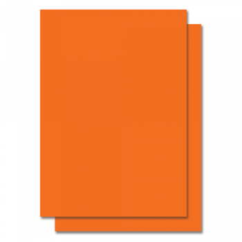 Fluorescent Color Label Sticker - A4 size - 100 sheets - Orange (Item No: C01-05 ORG)